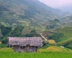 The wonderful beauty of terraced fields in Sa Pa