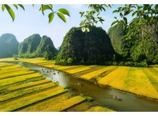 Northern Vietnam Eco Nature Tour